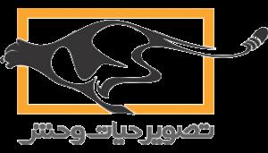 موسسه تصویر حیات وحش
